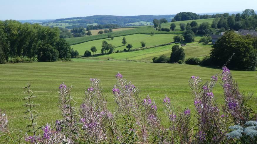 Wanderung: Über die Höhen rund um Engelskirchen