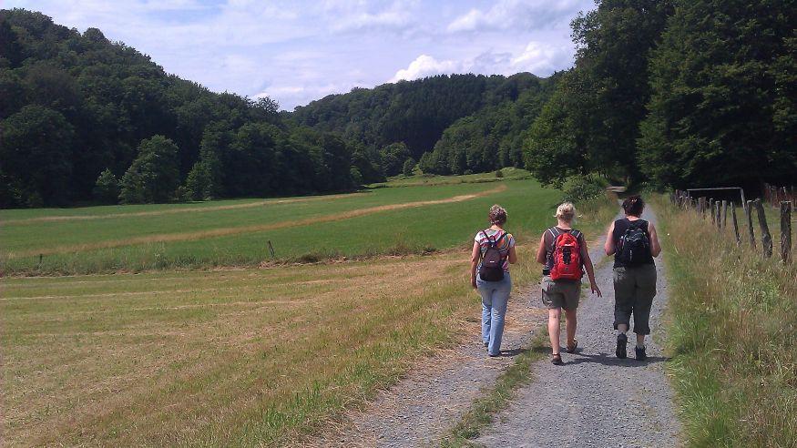 Wanderung: Auf dem Kräuterweg durchs Naafbachtal
