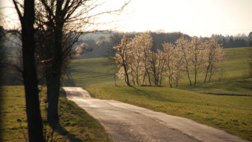 Wanderung auf dem Grafen- und Mönchsweg bei Altenberg